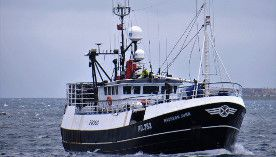 Don Fishing Macduff Vessel Maureen June