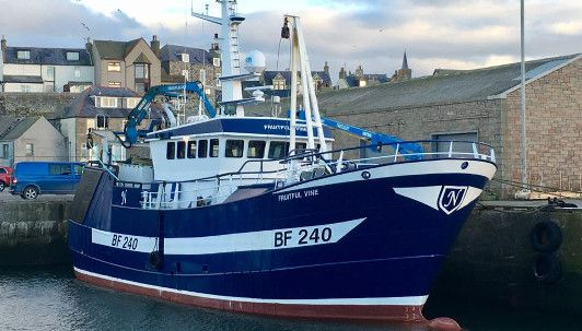 Peterhead Fruitful Vine Vessel
